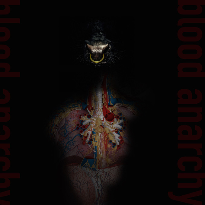 Blood Anarchy Cover.jpg