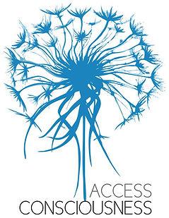 logo access.jpg