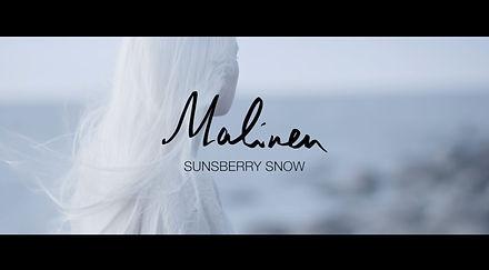 Sunsberry Snow (Malinen - Snow)