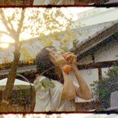 Kaki no Shizuku