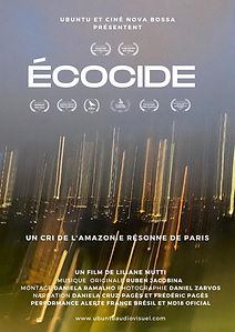 Écocide