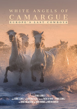 White Angels of Camargue - Europe's Last Cowboys
