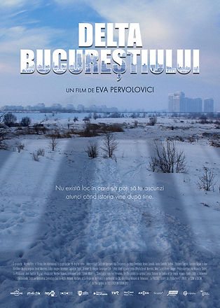 The Bucharest Delta