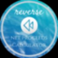 Reverse Net Calculator.png