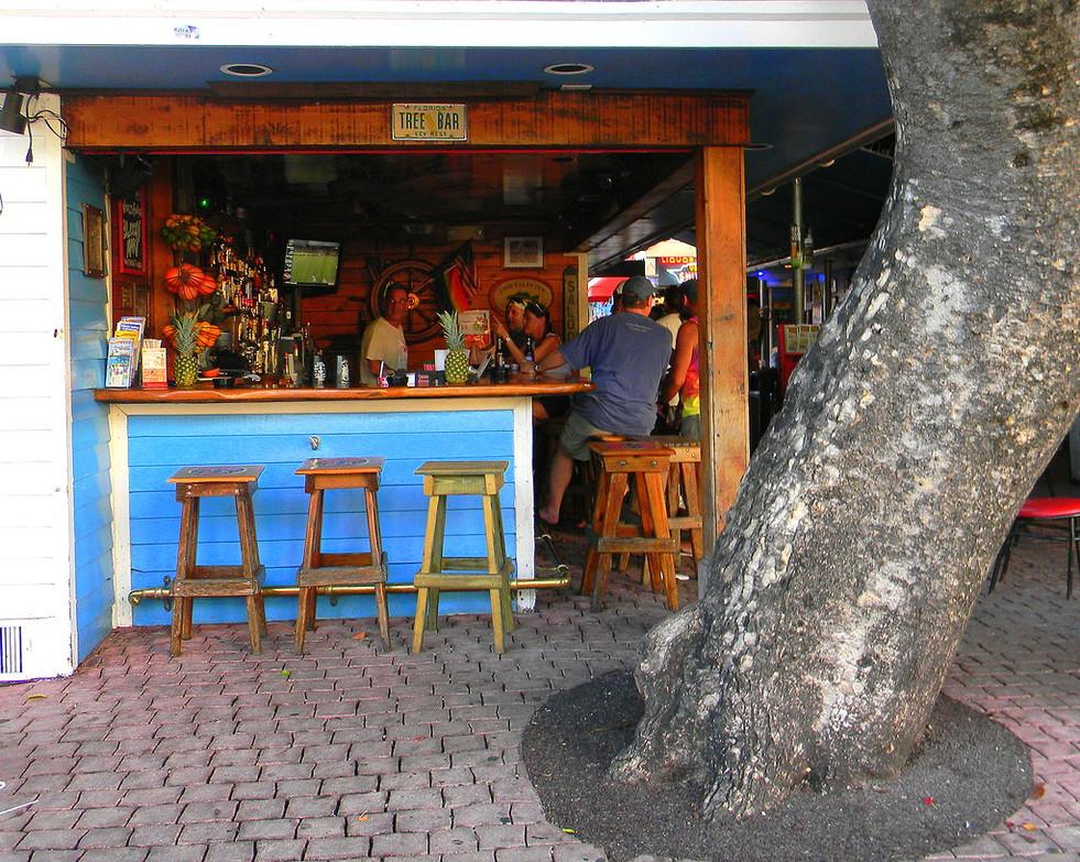 Key West Tree Bar