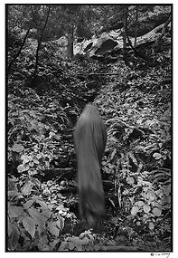 Black figure in forest