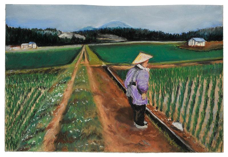 Woman-in-Rice-Field.jpg
