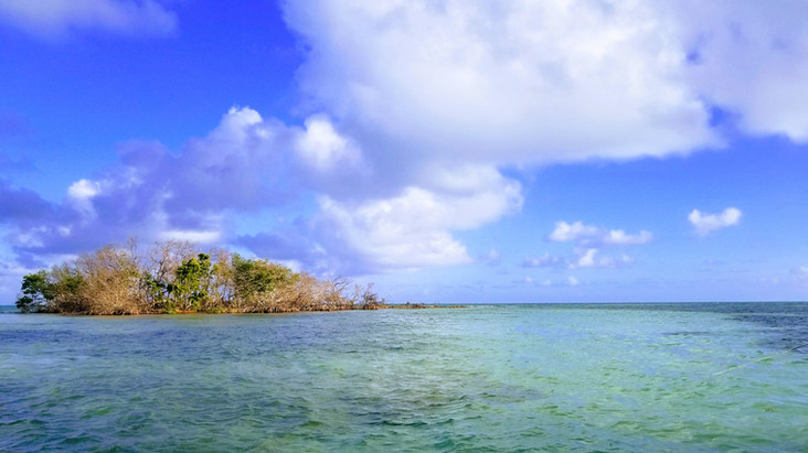 Small Island in Bahia Honda Key