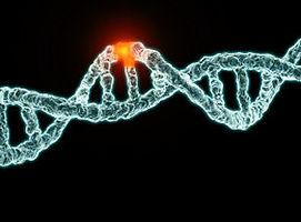 dna-mutation.jpg