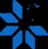 Coolslimming blue star logo.png