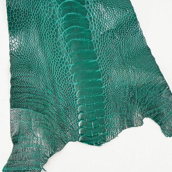 Страус OSTRICH LEG - BRILLIANT GREEN