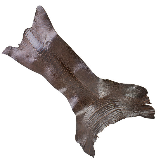 Страус SPECIAL PURCHASE OSTRICH LEG - CIGAR BROWN