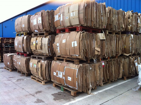 Cardboard Buyers.jpg