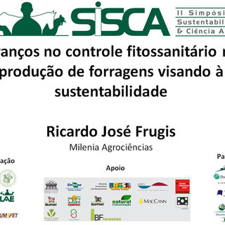 II SISCA 27.jpg