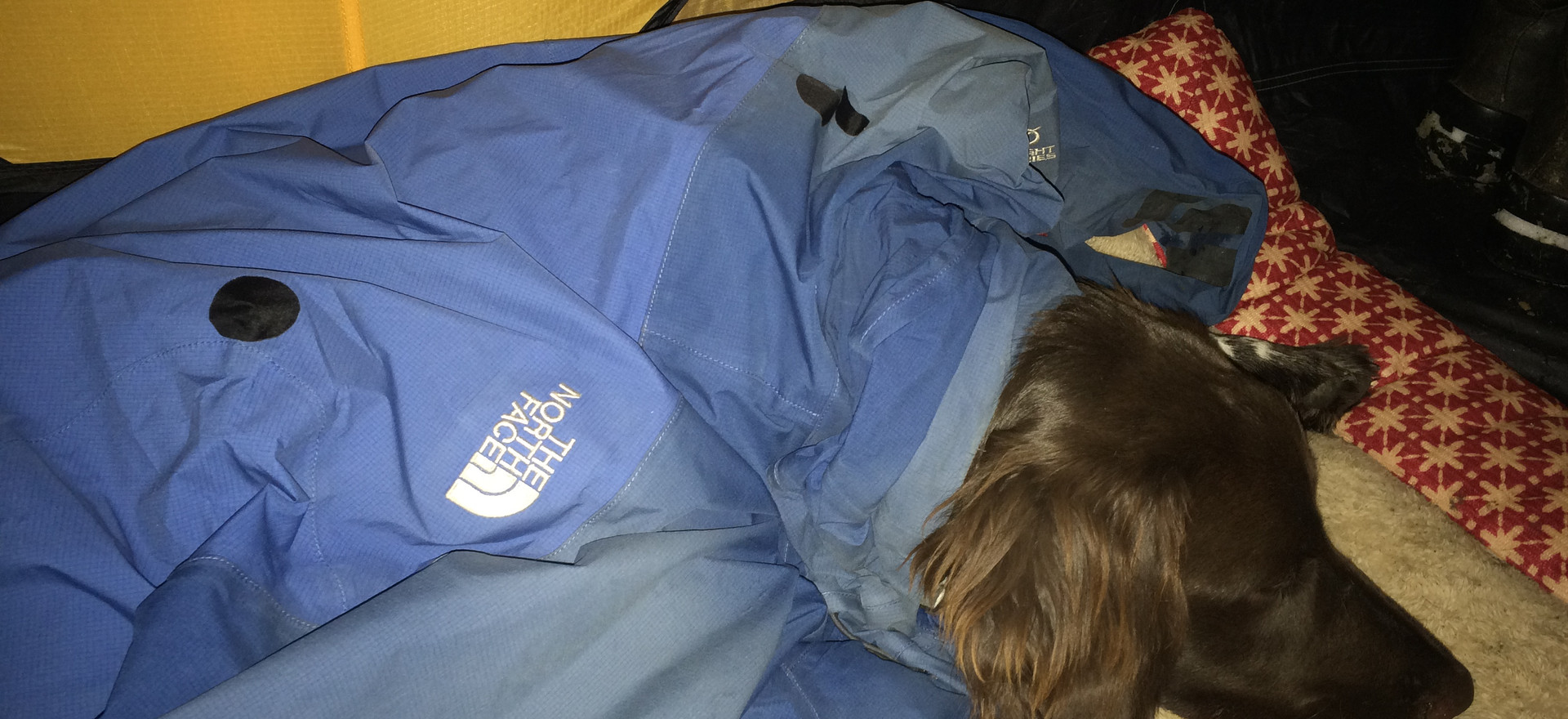 Modeling for North Face in the tent by night...