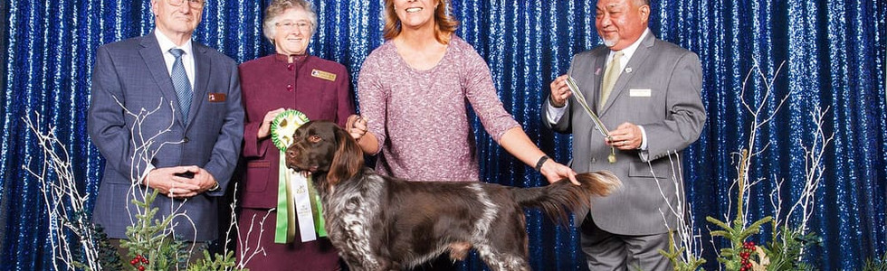 Aster's Grandsire, Zandor vom Fuchseck wins IABCA Best in Show Rare Breed Adult