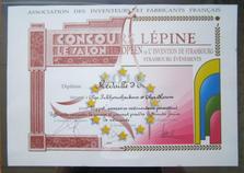 2010 диплом Конкурс Лепин _новый размер.