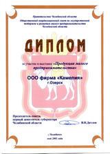2003 Челябинск малый бизнес _новый разме