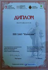 2015 День города Дмитрова_новый размер.j