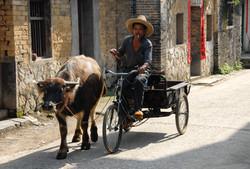 Farmer on Bike