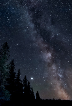 Milky Way with Trees