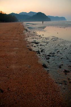 Thai Shoreline