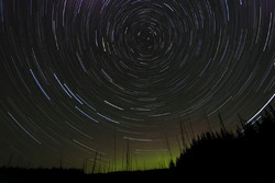Star Trails Forest