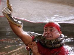 Man vs Cobra