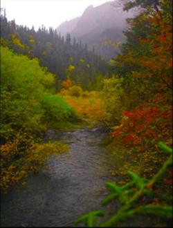 Mount Emei Valley