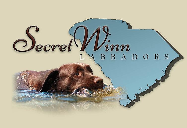 SecretWinn Logo 2 for website final.jpg