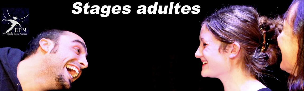 Stages adultes de théâtre   - Ecole Paris Marais - 22 rue Beautreillis - 75004 Paris -01.48.04.09.05.57