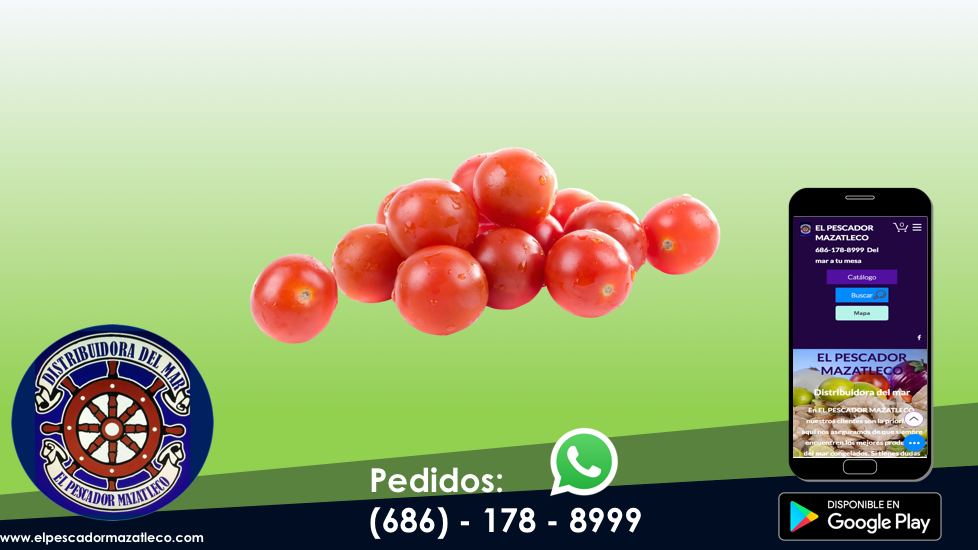 Tomate saladette 1 Kg
