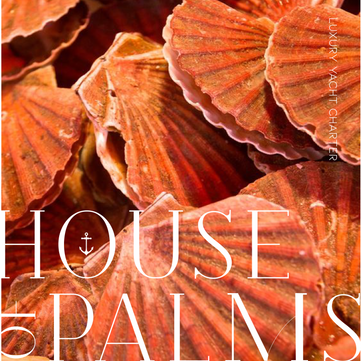 House of Palms | Branding project