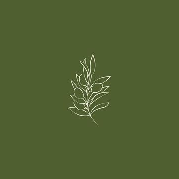 Olijfje | Branding Project | Illustratie