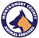 MCAS%20New%20Logo%20-%20Services-01_edited.png