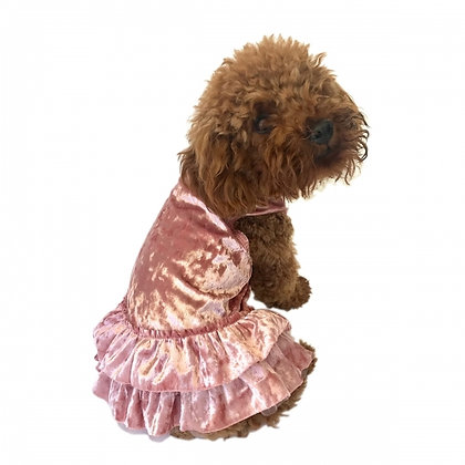 Crushing On You Dog Dress Blush Metallic Velvet