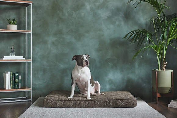 Griffith Orthopedic Pet Bed