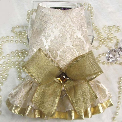 Hannah Gold Dog Harness Dress