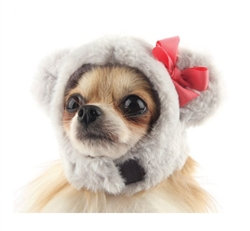 Icing Bear Dog Hat Gray
