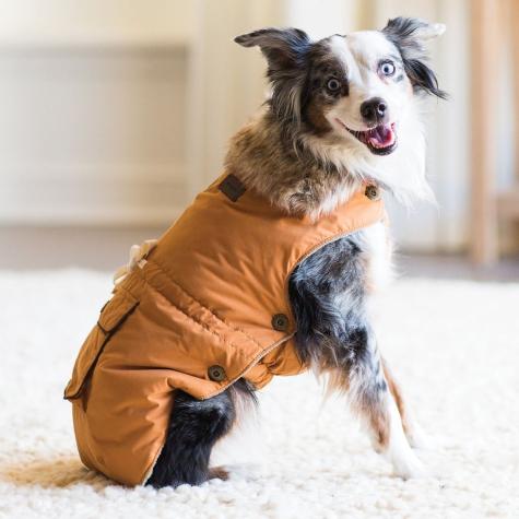 Army Dog Coat