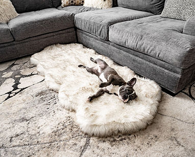 PupRug Runner Faux Fur Memory Foam  Dog