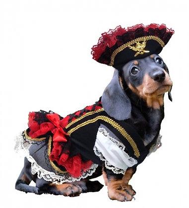 Swashbuckler Pirate Dog Costume