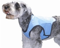 Cool Vest Blue