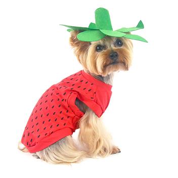 Strawberry Dog Costume