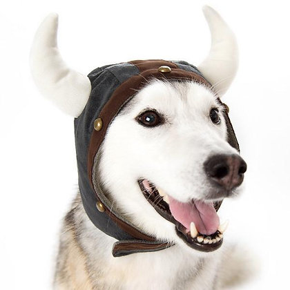 Viking Helmet Dog Hat