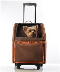 RIO Rolling Dog Carrier Orange Zest
