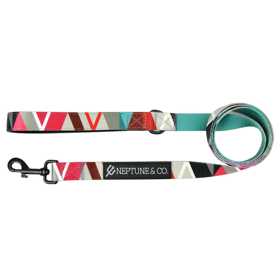 Geomuttric Dog Leash