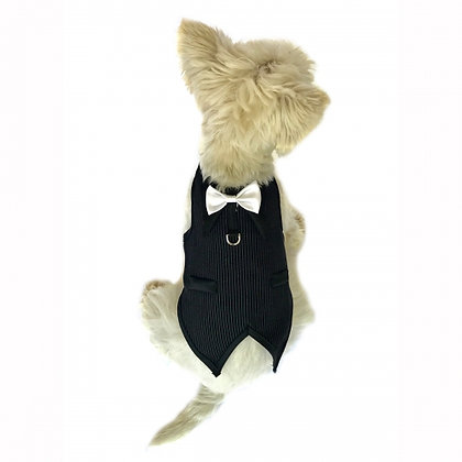 The Dogfather Pinstriped Dog Tuxedo