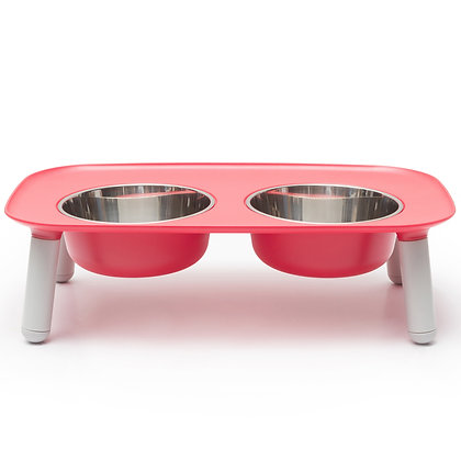 Elevated Feeder Dog Bowl Watermelon