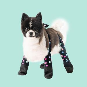 New Confetti Dog Leggings